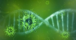 Numeri utili coronavirus, come comportarsi e come ricevere informazioni